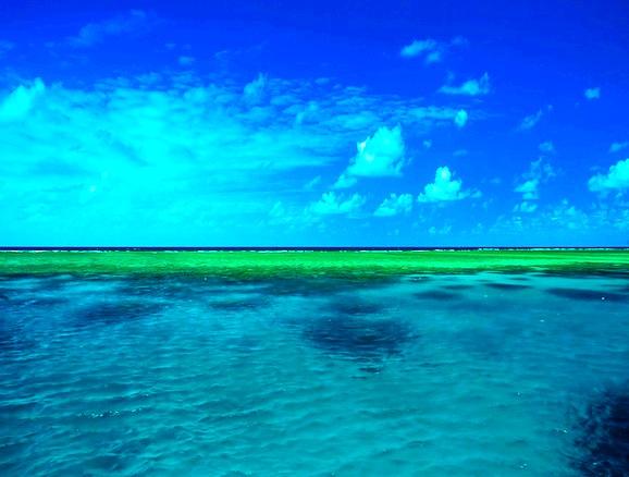 grande barreira de corais, grande barreira corais