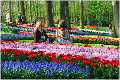 Cores da bela Holanda e seus pontos turísticos