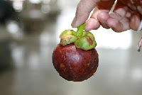 Benefits of Mangosteen Peel for Diabetes