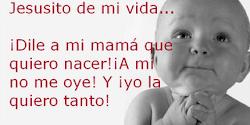 ¡Madres, que os hacéis las sordas! ¡¡Escuchad a este Niño!!