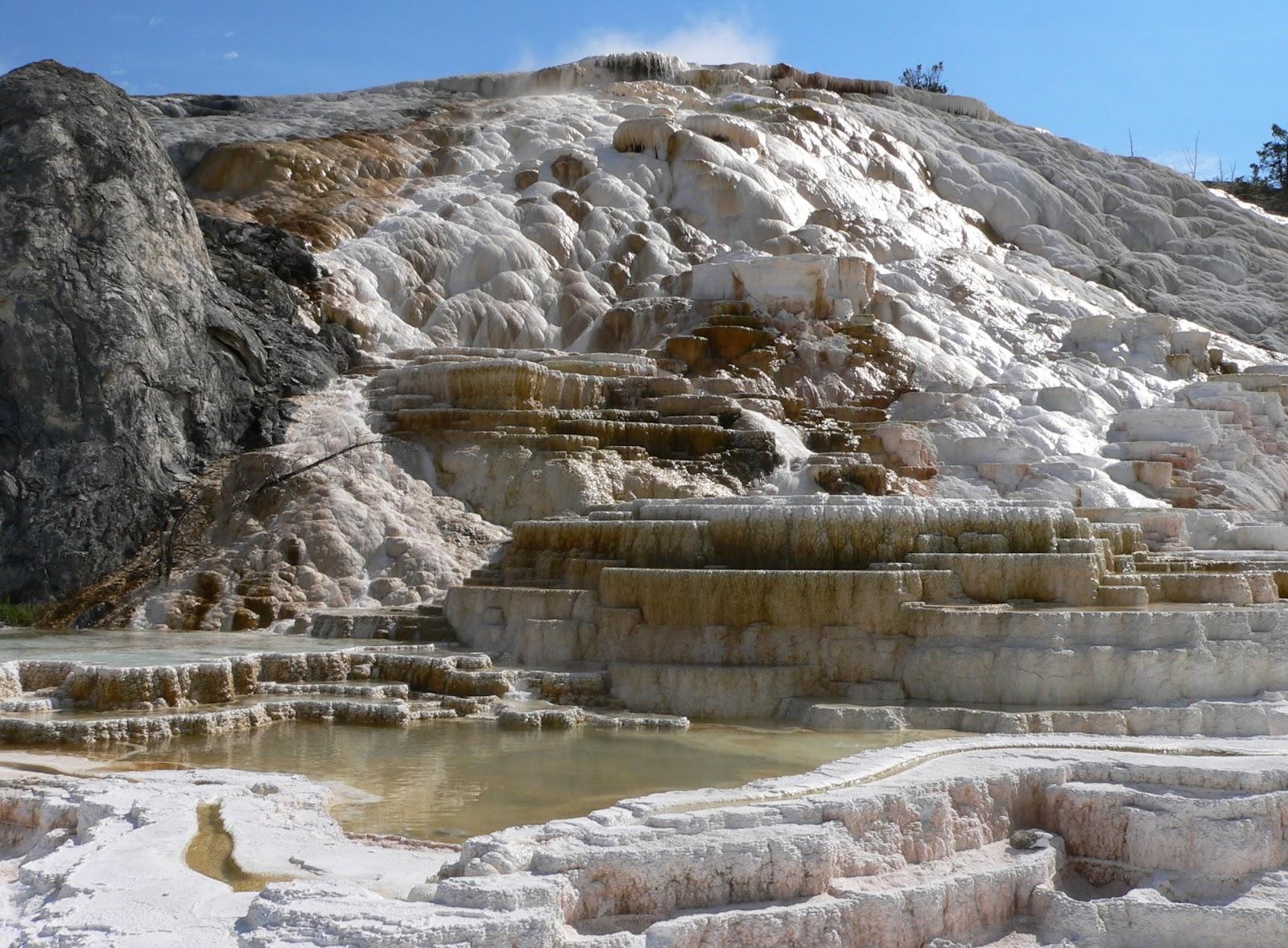 http://3.bp.blogspot.com/-CaxD08QtkhY/T3InLhnCbeI/AAAAAAAACyw/H1Z1nNHaNuk/s1600/yellowstone_pictures_wallpaper_5.jpg