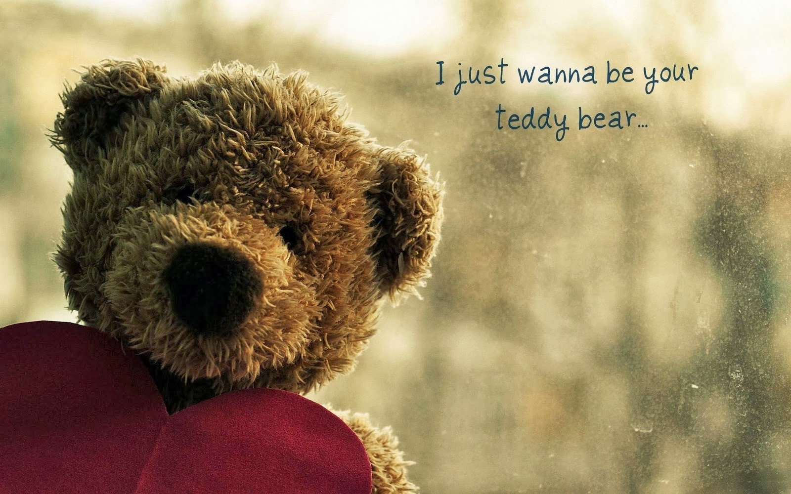i-wanna-be-your-teddy-bear-text-hd-wallpaper.jpg