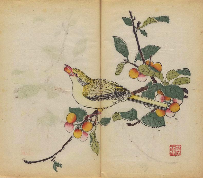 El libro impreso multicolor más antiguo del mundo se ha abierto y digitalizado por primera vez