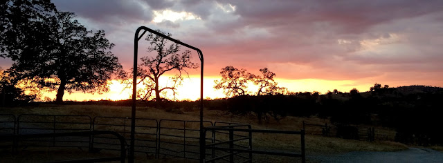 Sunset at the Oak Star Ranch