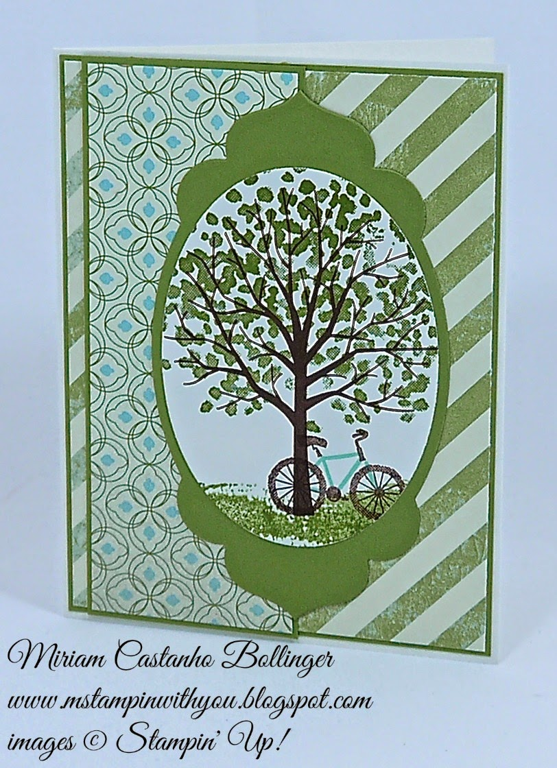 Miriam Castanho Bollinger, #mstampinwithyou, stampin up, demonstrator, sc535, retirement, etcetera dsp, sheltering tree stamp set, big shot, apothecary accents framelit, oval collection framelits, su