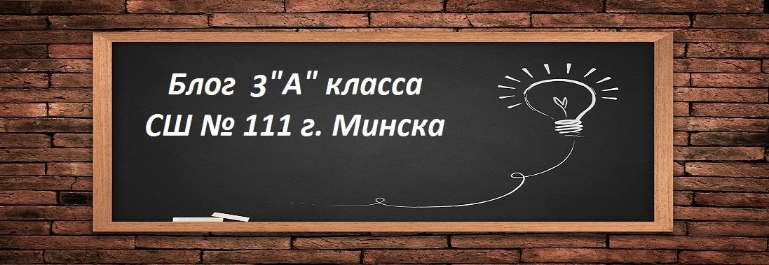 "Блог 3 ""А"" класса СШ № 111 г. Минска"