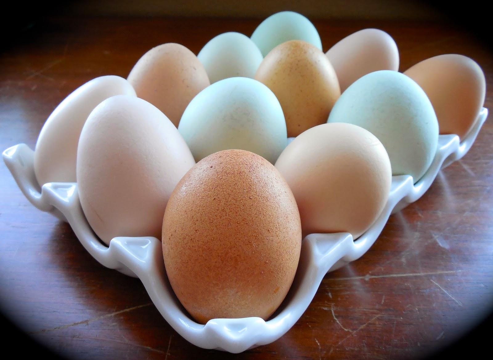 how to make fresh boiled eggs peel easier