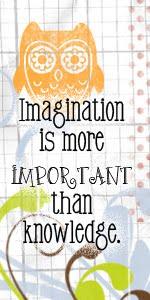 'A imaginação é mais importante que o conhecimento...'