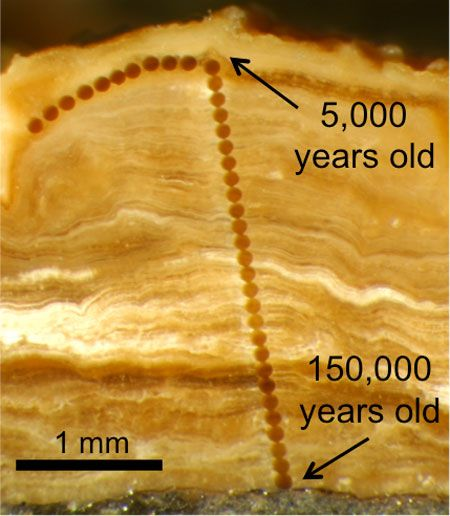 Is carbon dating more accurate than stratigraphy
