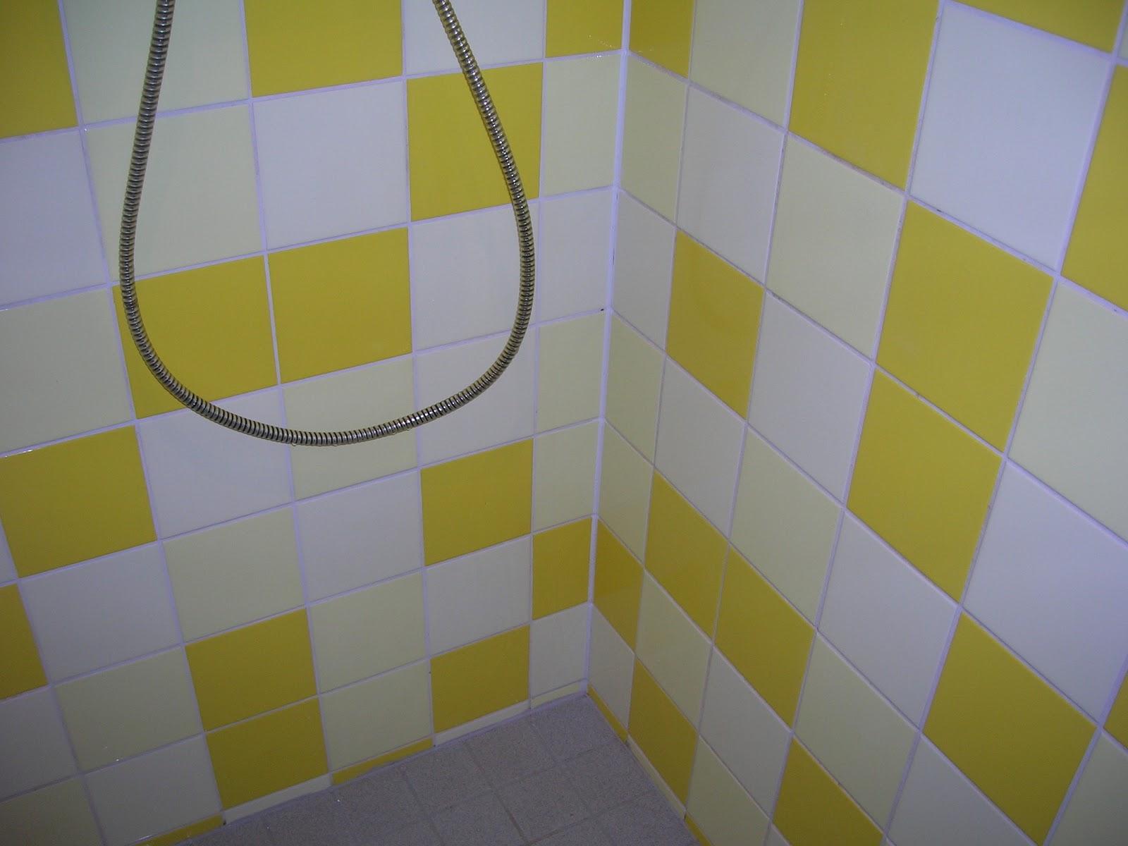 Inhaalslag in 365 dagen: #63/365 Voegen in de douche schoonmaken