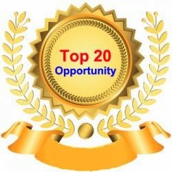 TOP 20 WEB OPPORTUNITIES