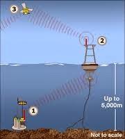 Tsunami Warning System