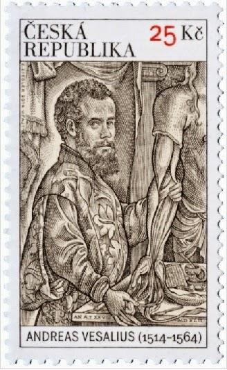 AFNB - Boletim Virtual: Andreas Vesalius - Fundador da anatomia moderna