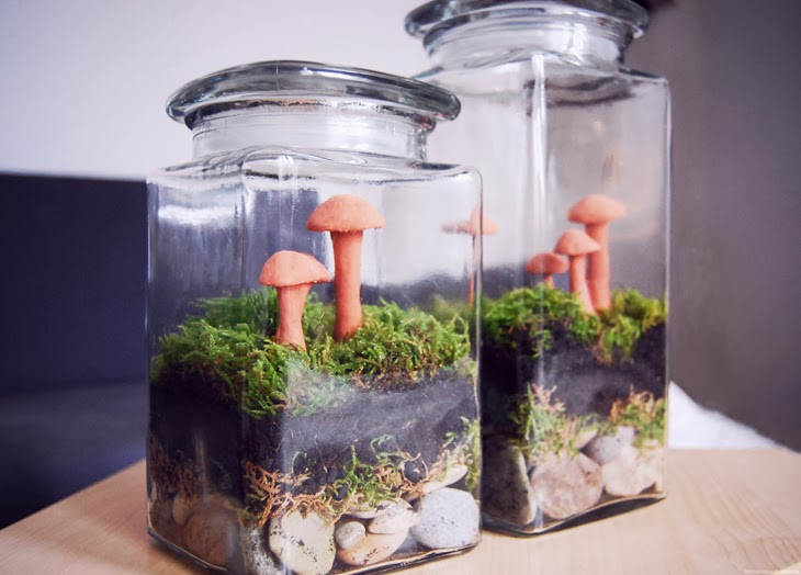 rotkehlchen diy mini garden in a jar. Black Bedroom Furniture Sets. Home Design Ideas