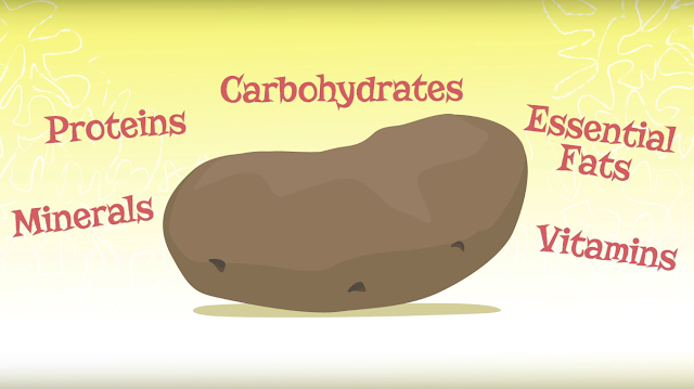 Die Geschichte der Kartoffel | Ein Animationsfilm über die tolle Knolle