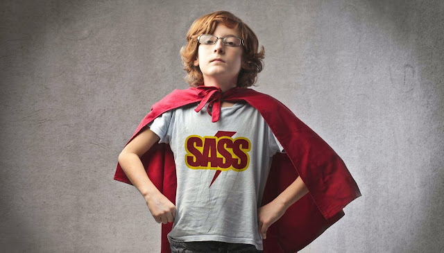 The beginner's guide to Sass