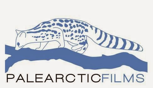 Palearctic Films