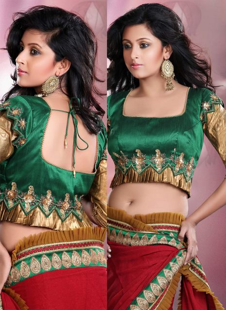 latest collection of saree blouse back designs 2012 2013