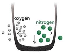 nitrogeno vs aire en los neumaticos