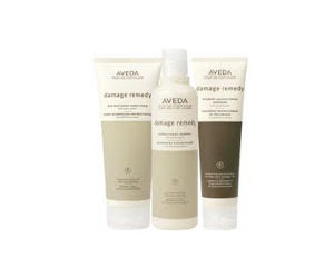 Free Aveda Damage Therapy
