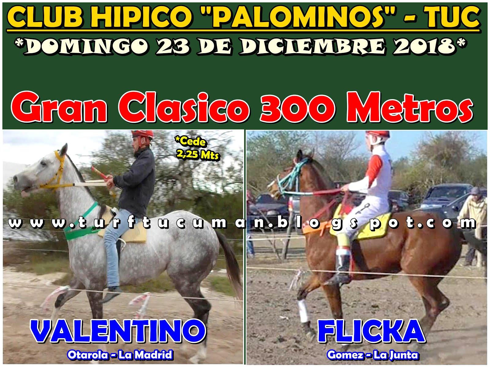 VALENTINO VS FLICKA