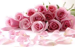 40 Roses Full HD Mediafire Photo Wallpapers
