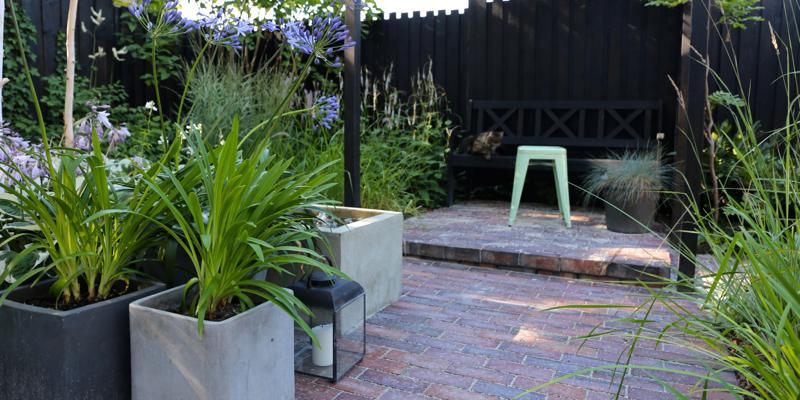 Havefolket: tilbageblik i haven