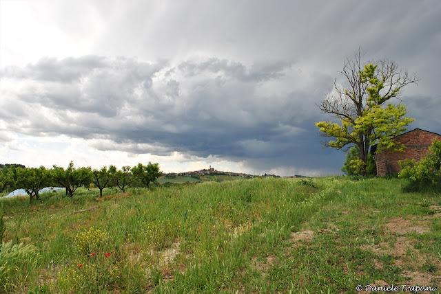 Sentiero del Malvasia - Casorzo