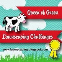 CAS Challenge - March 2014