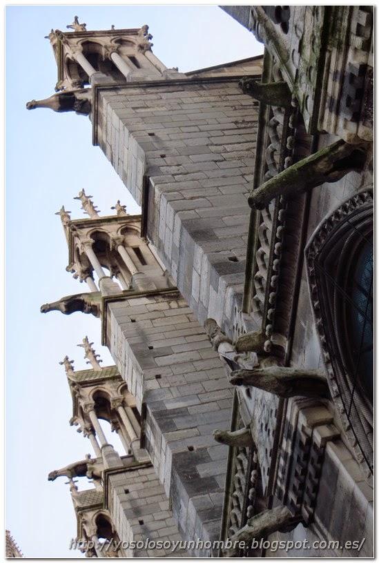 lateral de Notre Dame