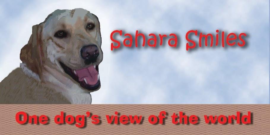 Sahara Smiles