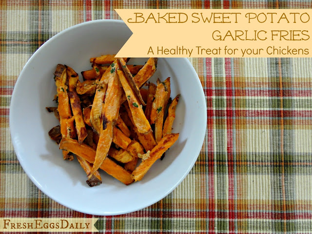 Sweet Potato Garlic Fries - A Healthy Treat For your Chickens | Fresh ...