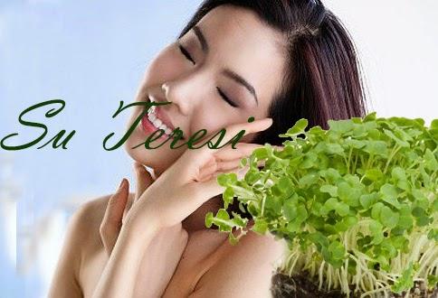 Kanseri Önleme. Cilt Sağlığı,Tiroid Bezi, Su Teresi, Akne,cilt lekesi, cilt sağlığı, sivilce, egzema
