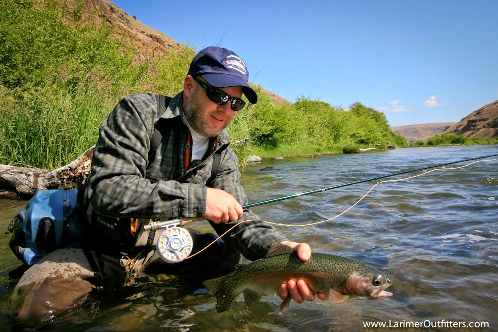 Deschutes Trout
