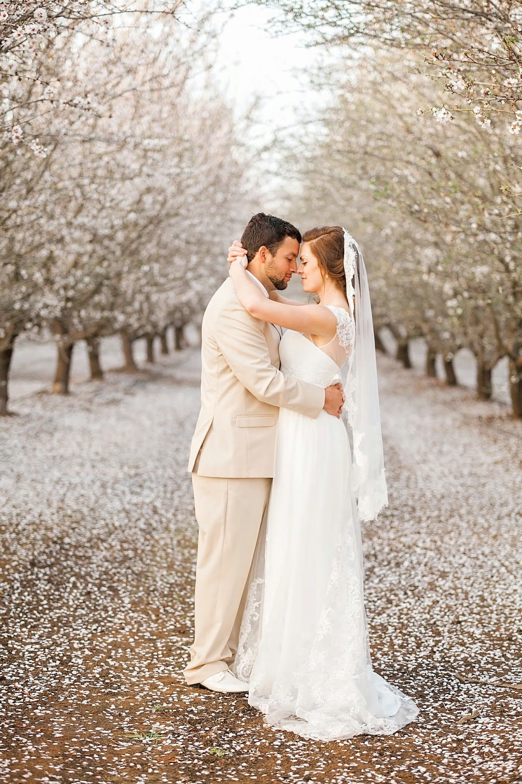 vista ranch and cellars, vista merced, vista ranch merced, , garden wedding, spring outdoor wedding, diy spring wedding, almond blossom wedding, etsy wedding dress, vintage wedding dress, ethereal wedding dress, simple wedding dress, antique wedding dress, tan wedding suits, tan and coral wedding