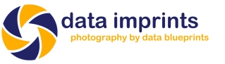 Data Imprints (photography by data blueprints)