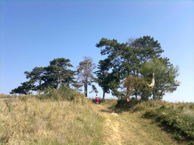 Alergător şi maseur la Maratonul Târnavei, alături de Supermămici Alergătoare. Din Timişoara la Târnăveni, 29 August 2015. Traseu 01