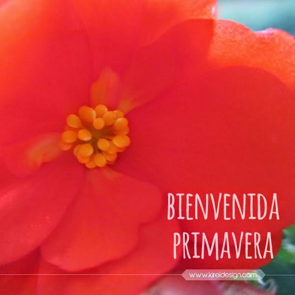 flor imagenes para facebook primavera