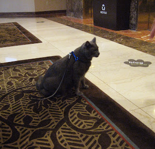 BlogPaws 2011: The Place for Pets