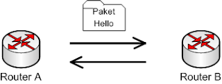 packet hello ospf