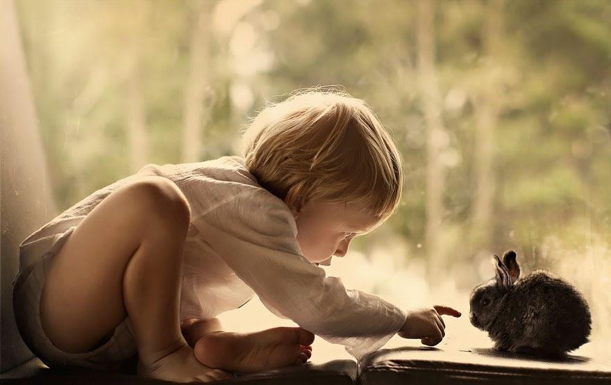 Memilih Binatang Yang Cocok Untuk dipelihara Anak