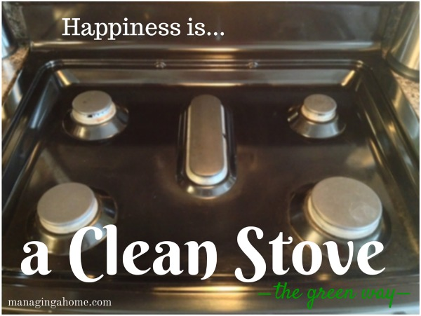 Green cleaning of the kitchen stove