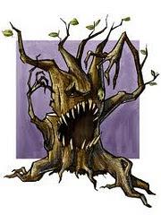 El bosque enfadado