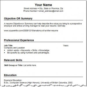 info2india get best resume writing tips and ideas