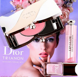 Dior Fluid