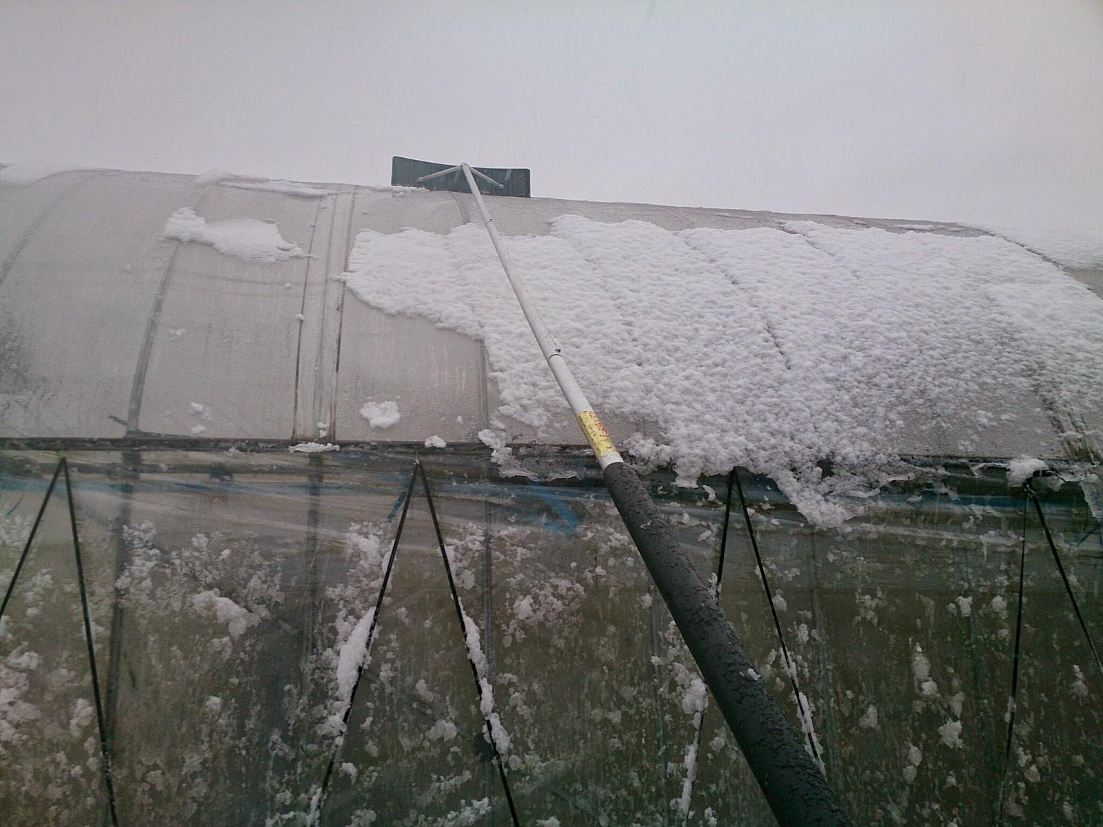 ビニールハウス 雪落し