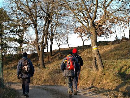 Caminant vers La Codina