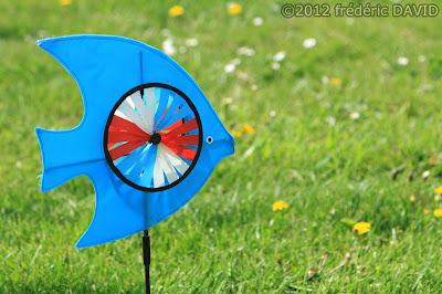 éolienne cerf volant fête vent spectacle poisson Brie Comte Robert Seine et Marne