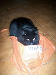 Spooky Cat's shopping bag yoga for kitties