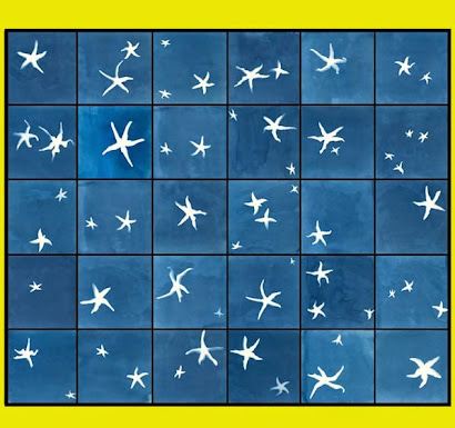 CELESTIAL TRAVELLERS / ANNA ATKINS DREAMS MATISSE, 2003